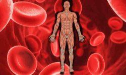 एनीमिया खून की कमी – आयरन की कमी वाला एनीमिया