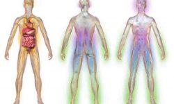 डायबिटिक मधुमेह न्यूरोपैथी के लक्षण और उचार Diabetic Neuropathies