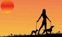 Walk – टहलना, वजन कम करने की सही सुरुवात