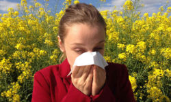 एलर्जिक राइनाइटिस Seasonal Allergies (Allergic Rhinitis) जानकारी, लक्षण, कारण, उपचार और बचाव