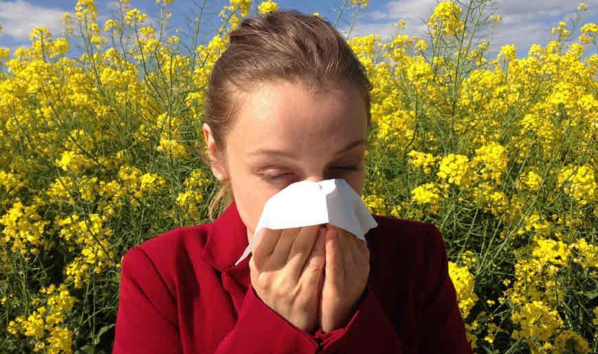 एलर्जी से बुखार और छींक आना