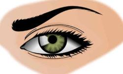 भौहों कैसे बढ़ाएं How to Grow Eyebrows Fast in Hindi