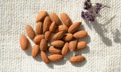 बादाम Badam के उपयोग, फायदे एवं नुकसान Almonds Benefits And Side Effects In Hindi