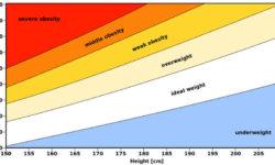 लम्बाई के हिसाब से वजन का चार्ट